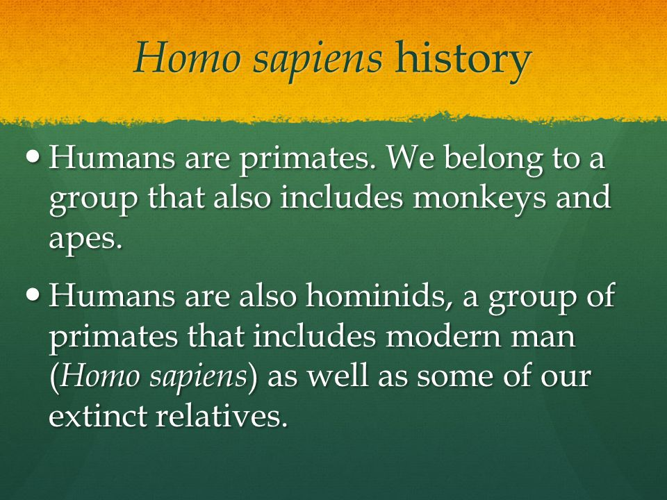 Homo sapiens history Humans are primates. We belong to a group that also includes monkeys and apes.