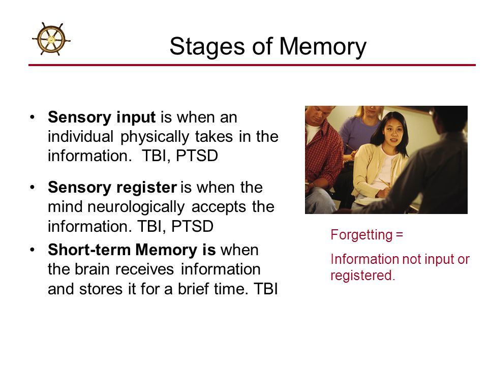 Stages of Memory Sensory input is when an individual physically takes in the information. TBI, PTSD.