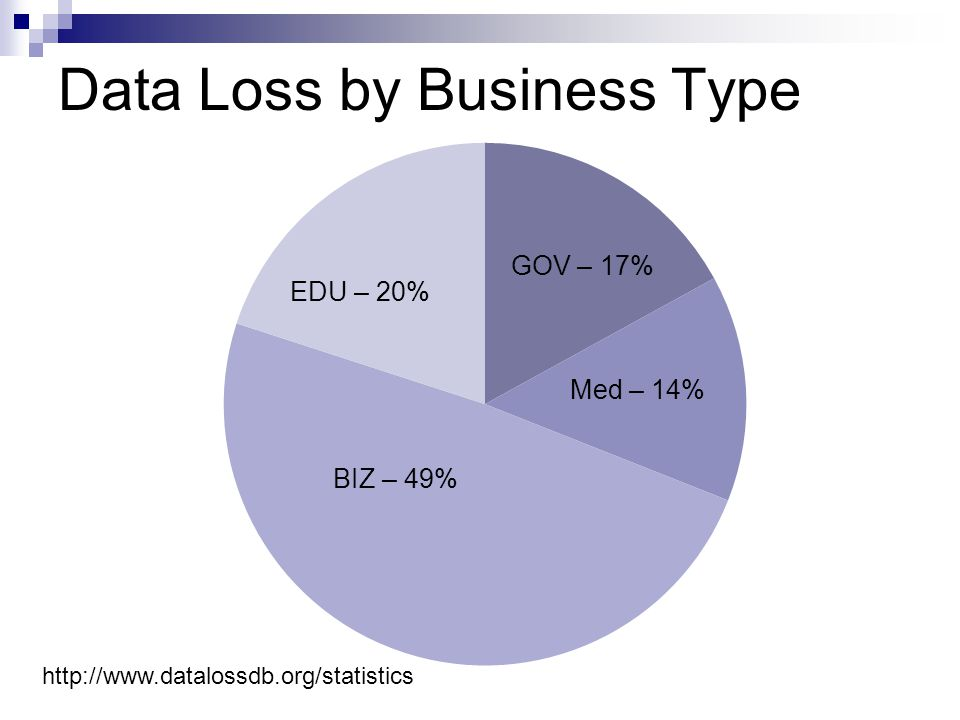 Data Loss by Business Type