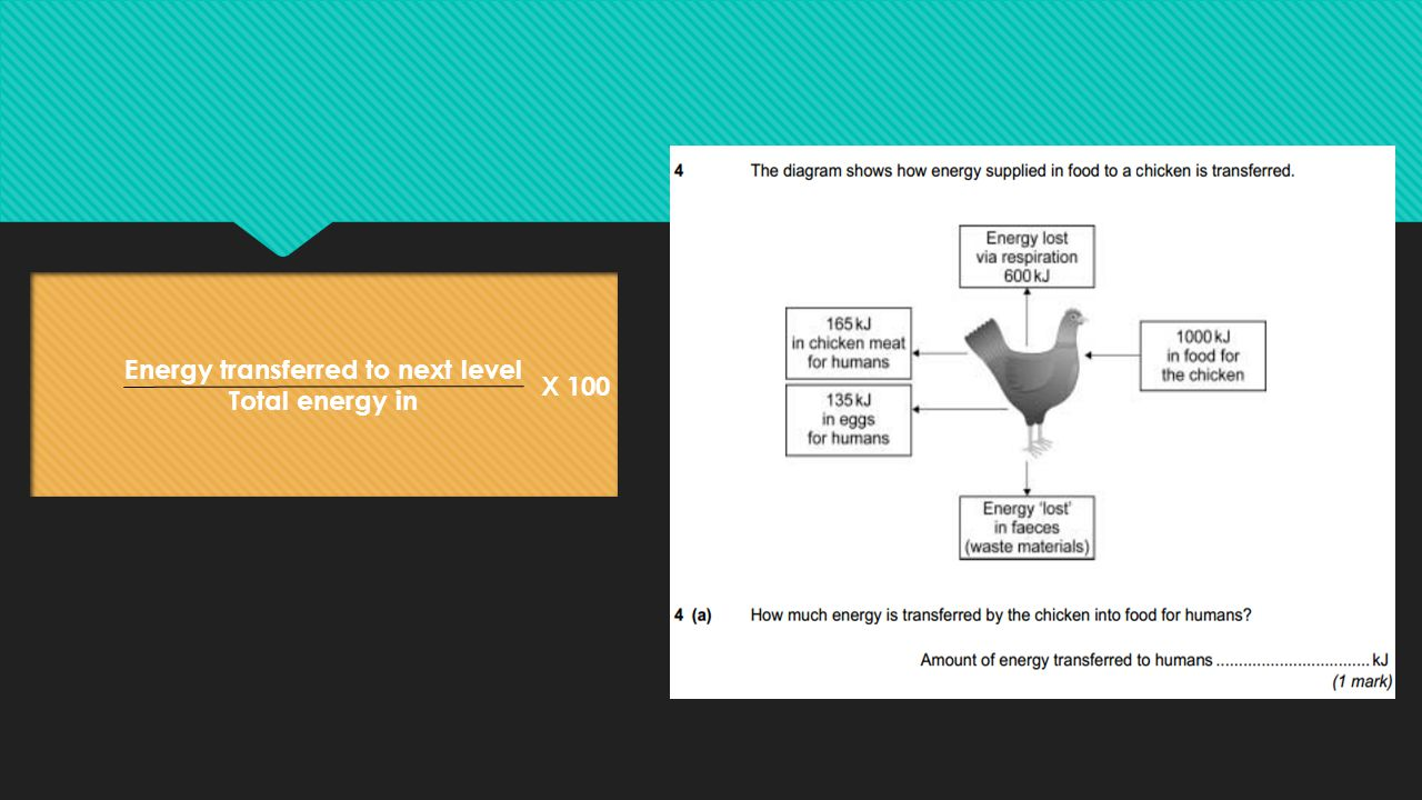Energy transferred to next level