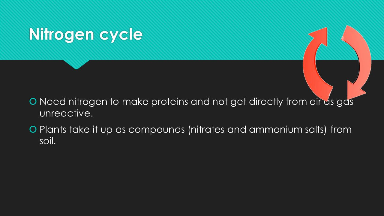 Nitrogen cycle Need nitrogen to make proteins and not get directly from air as gas unreactive.