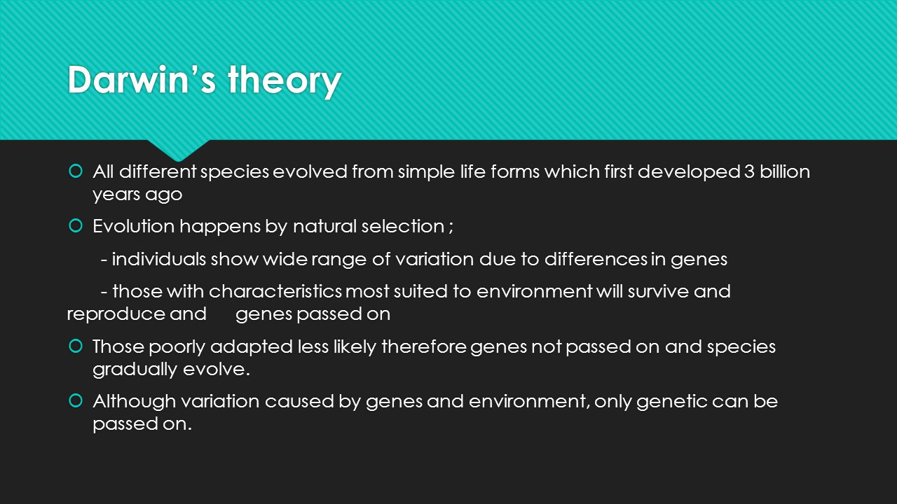 Darwin's theory All different species evolved from simple life forms which first developed 3 billion years ago.