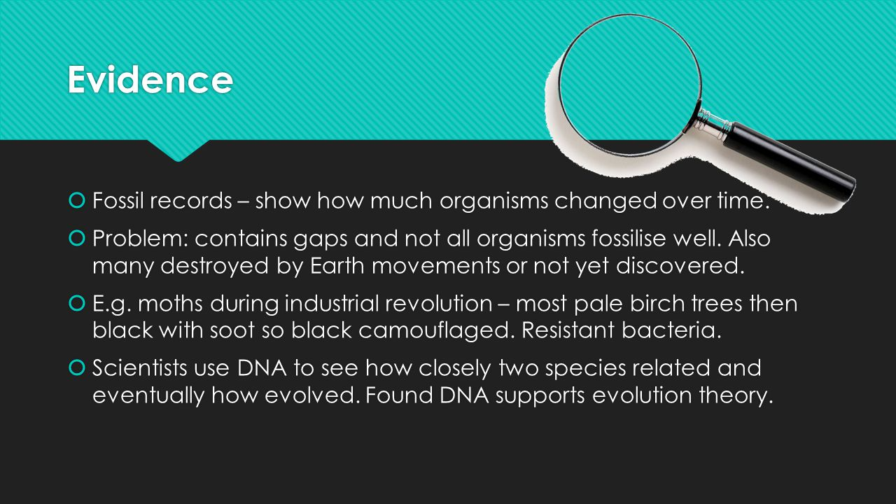 Evidence Fossil records – show how much organisms changed over time.