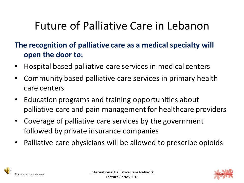 Future of Palliative Care in Lebanon
