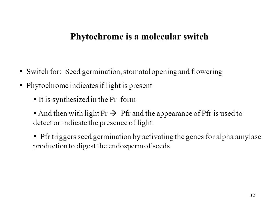 Phytochrome is a molecular switch