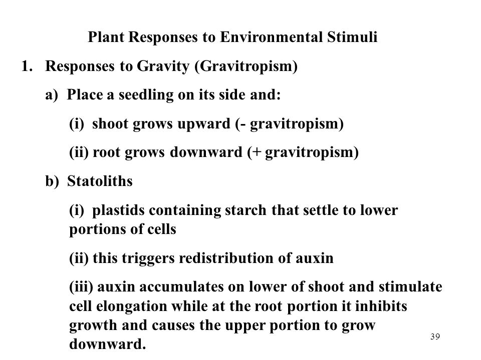 Plant Responses to Environmental Stimuli