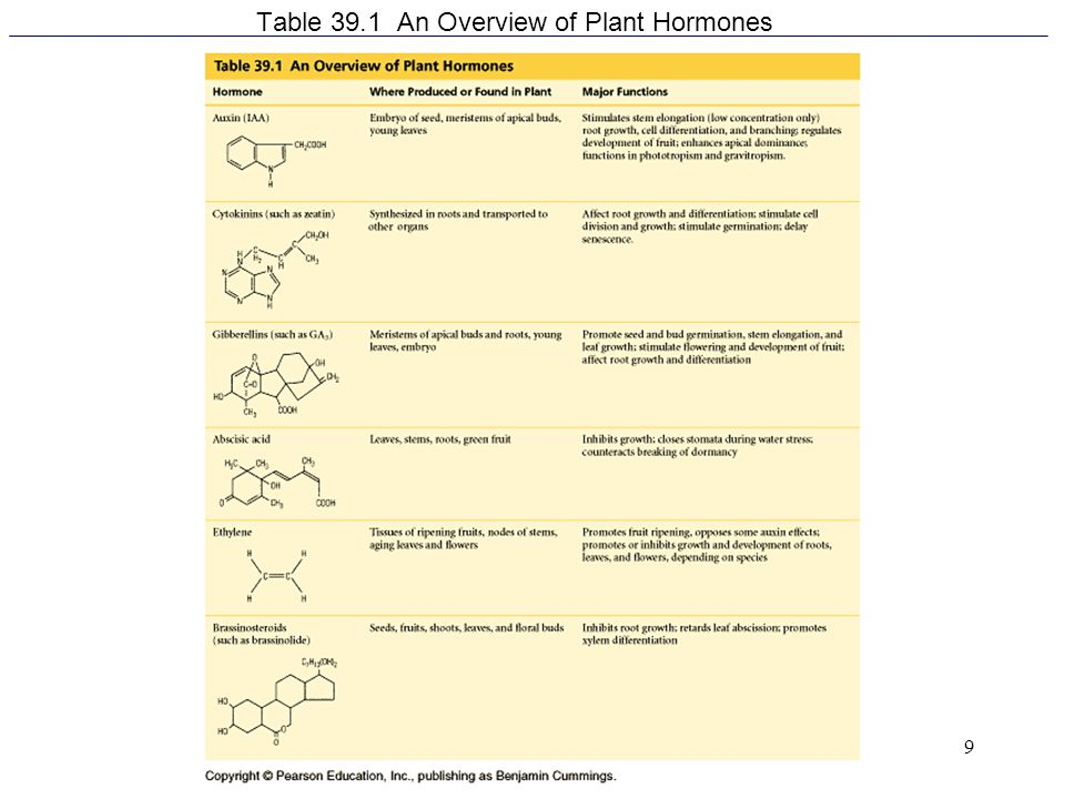 Table 39.1 An Overview of Plant Hormones