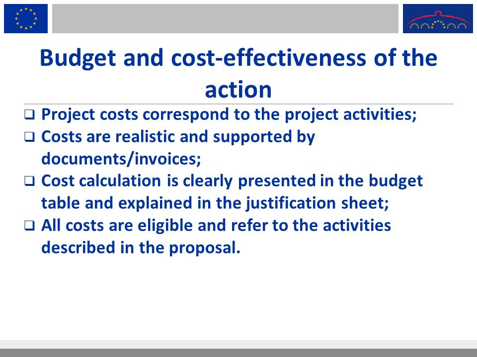 Budget and cost-effectiveness of the action