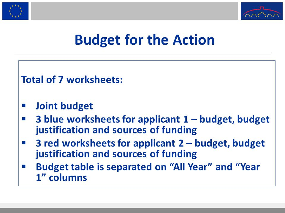 Budget for the Action Total of 7 worksheets: Joint budget