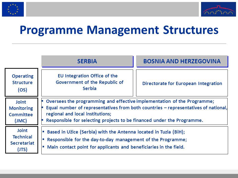 Programme Management Structures