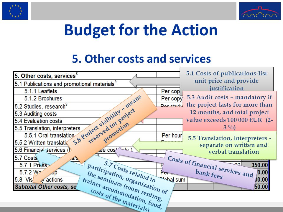 Budget for the Action 5. Other costs and services