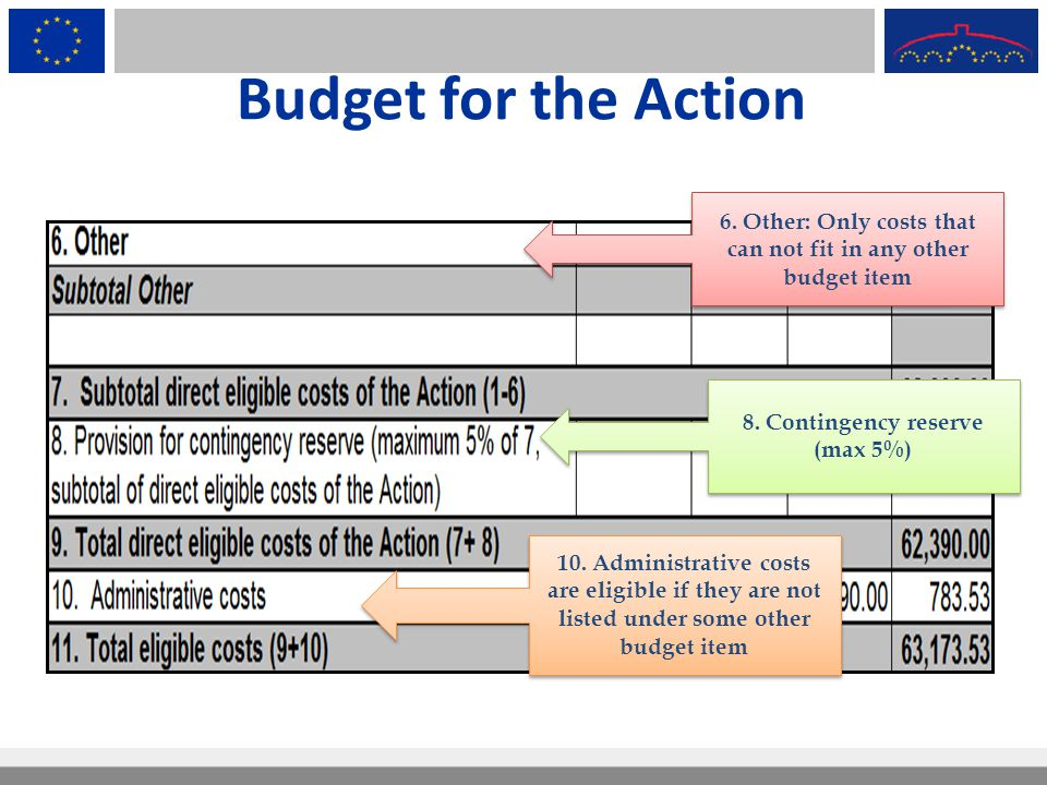 Budget for the Action 6. Other: Only costs that can not fit in any other budget item. 8. Contingency reserve (max 5%)