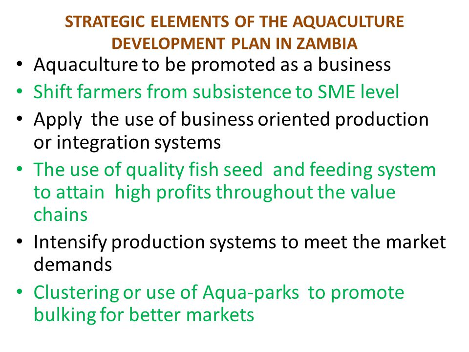 STRATEGIC ELEMENTS OF THE AQUACULTURE DEVELOPMENT PLAN IN ZAMBIA