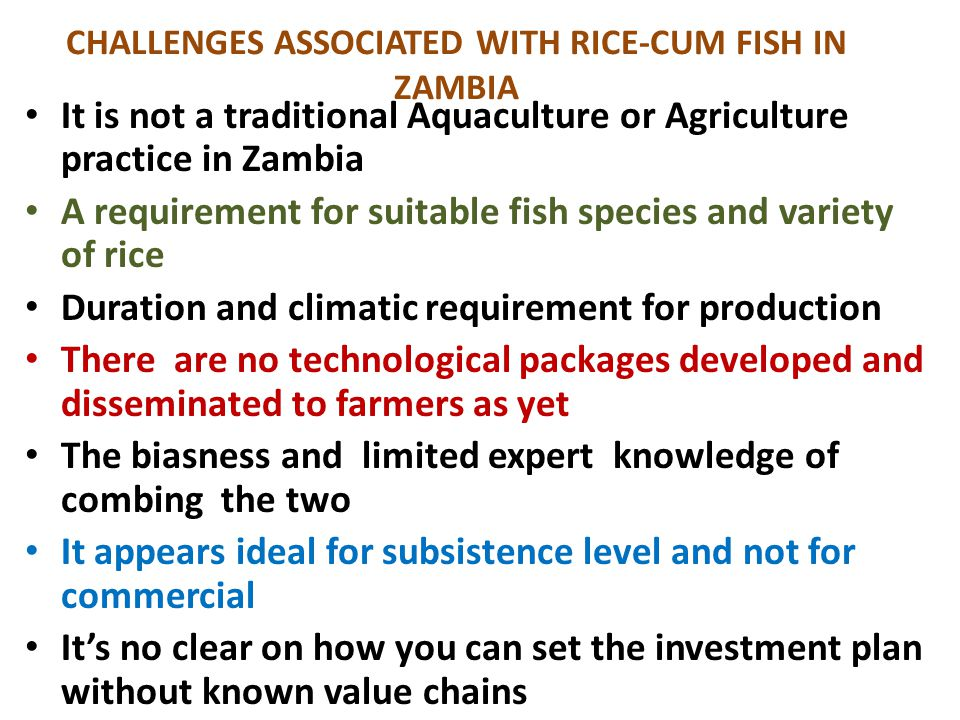 CHALLENGES ASSOCIATED WITH RICE-CUM FISH IN ZAMBIA