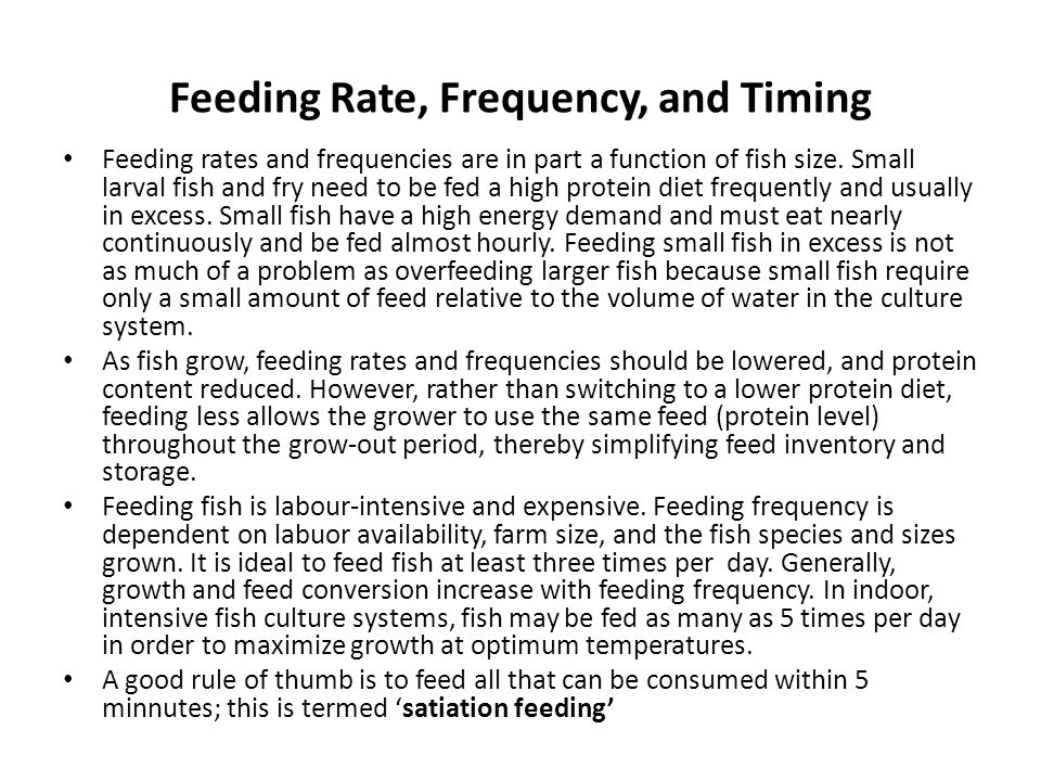 Feeding Rate, Frequency, and Timing