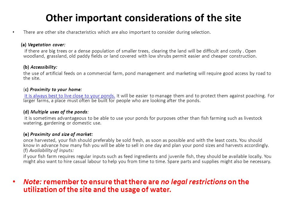 Other important considerations of the site