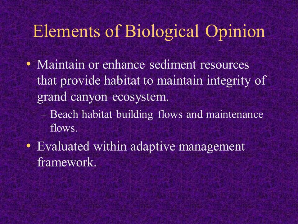Elements of Biological Opinion