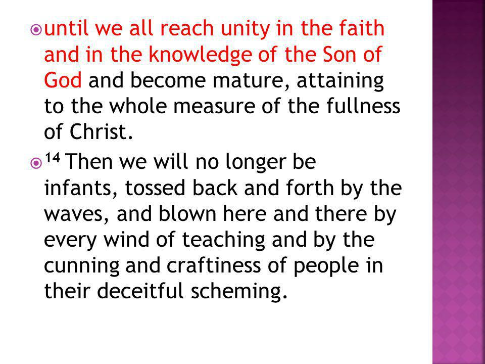 until we all reach unity in the faith and in the knowledge of the Son of God and become mature, attaining to the whole measure of the fullness of Christ.