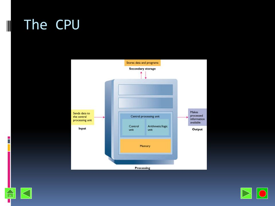 The CPU
