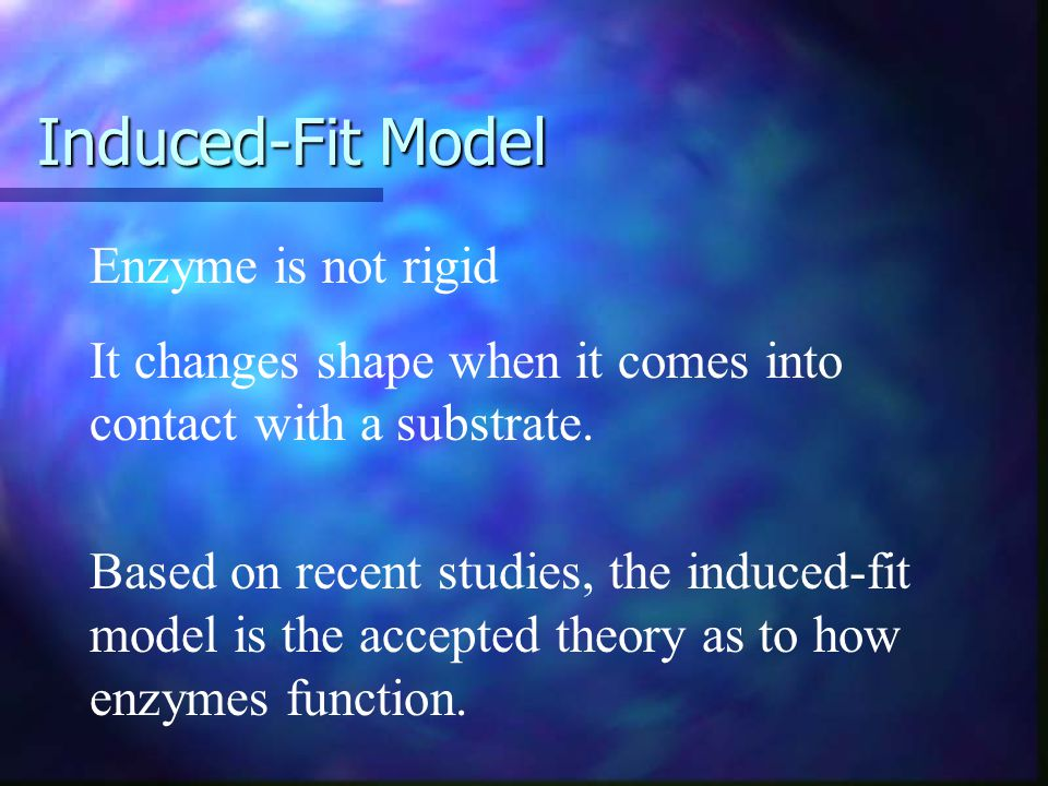 Induced-Fit Model Enzyme is not rigid