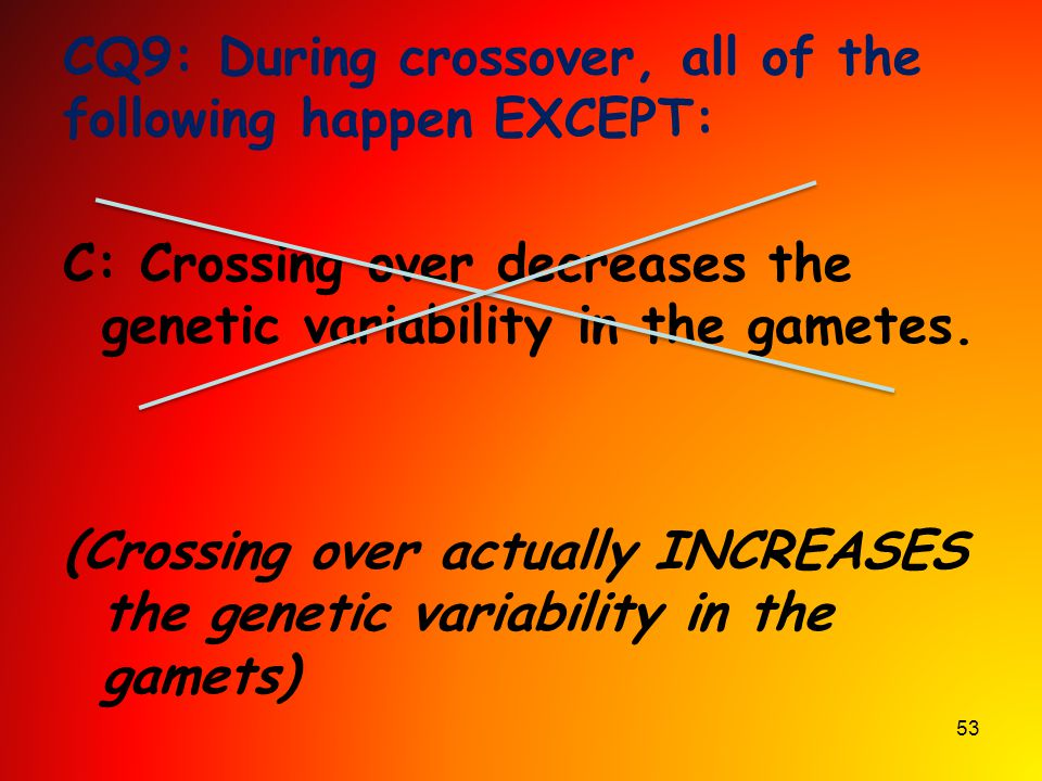 CQ9: During crossover, all of the following happen EXCEPT: