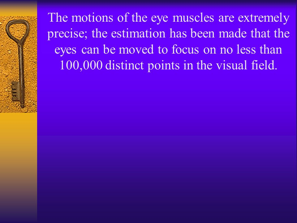 The motions of the eye muscles are extremely precise; the estimation has been made that the eyes can be moved to focus on no less than 100,000 distinct points in the visual field.