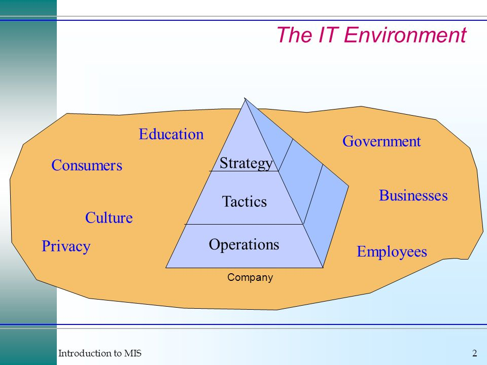The IT Environment Education Government Strategy Consumers Businesses