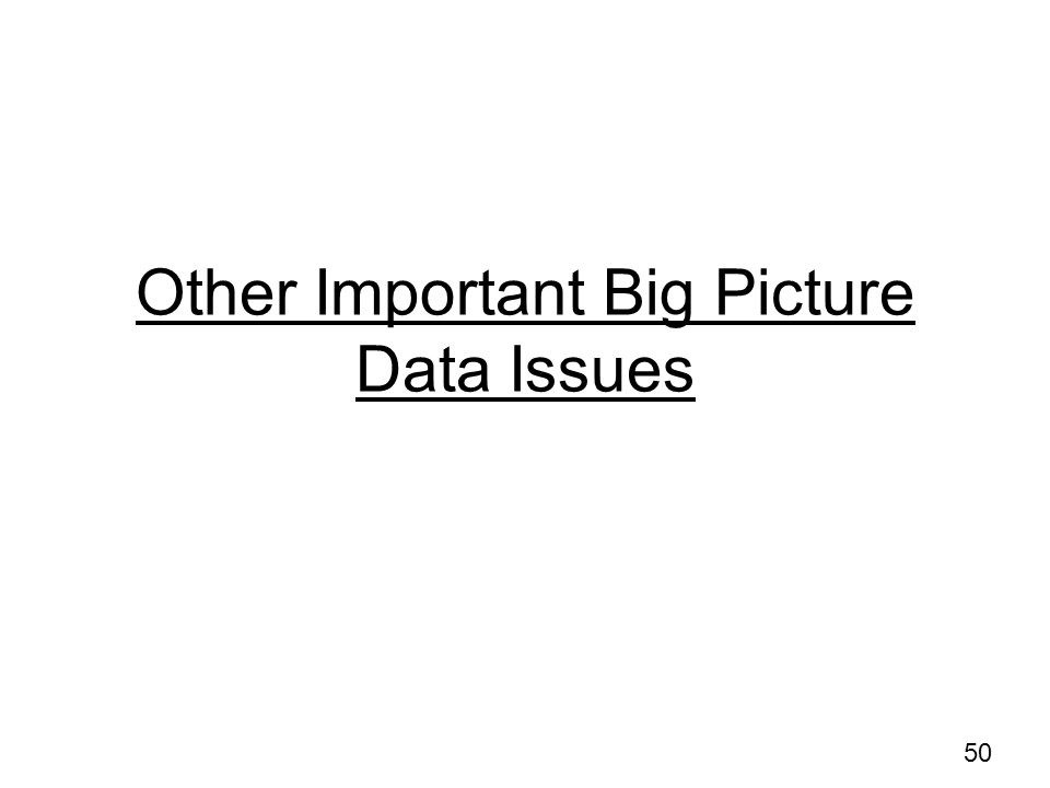 Other Important Big Picture Data Issues