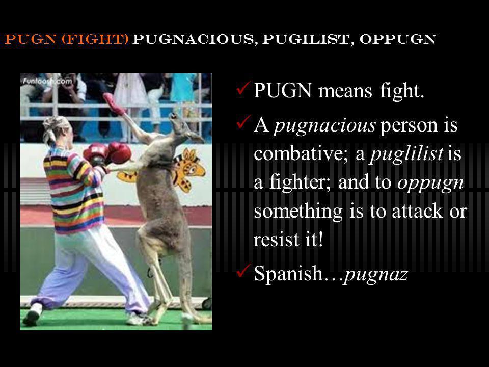 pugn (fight) pugnacious, pugilist, oppugn