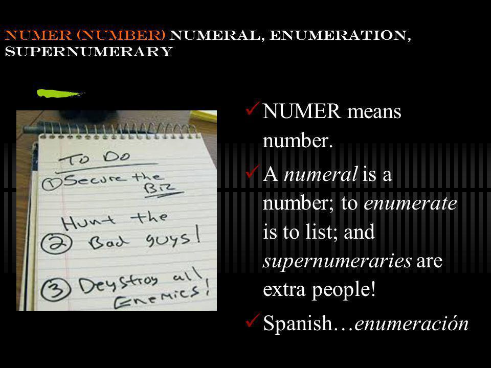 numer (number) numeral, enumeration, supernumerary