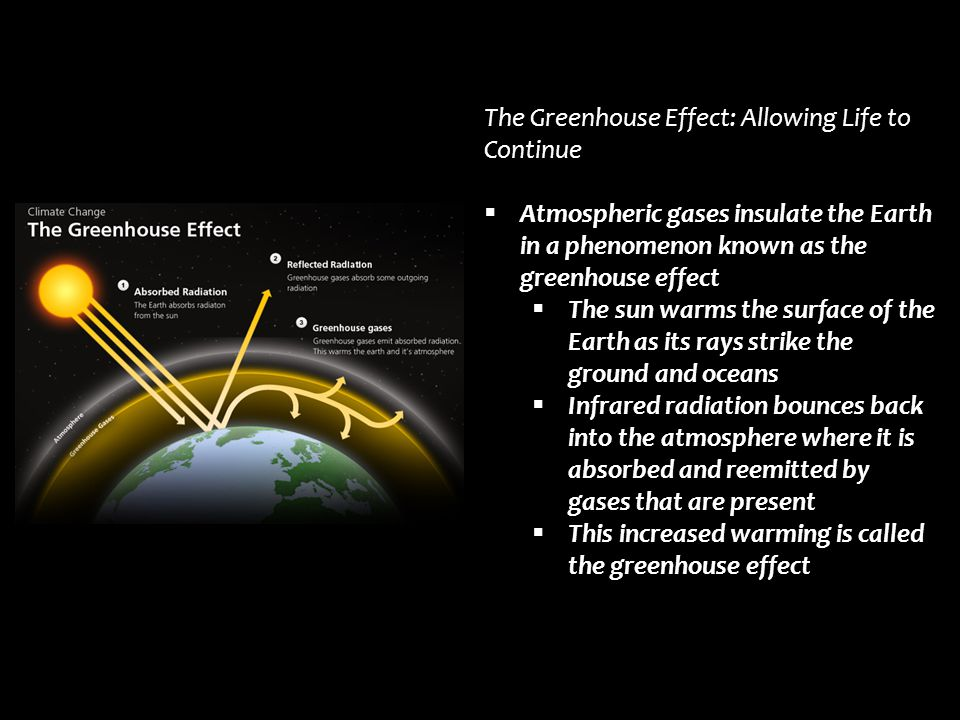 The Greenhouse Effect: Allowing Life to Continue