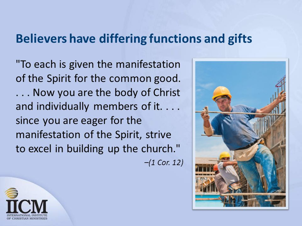 Believers have differing functions and gifts