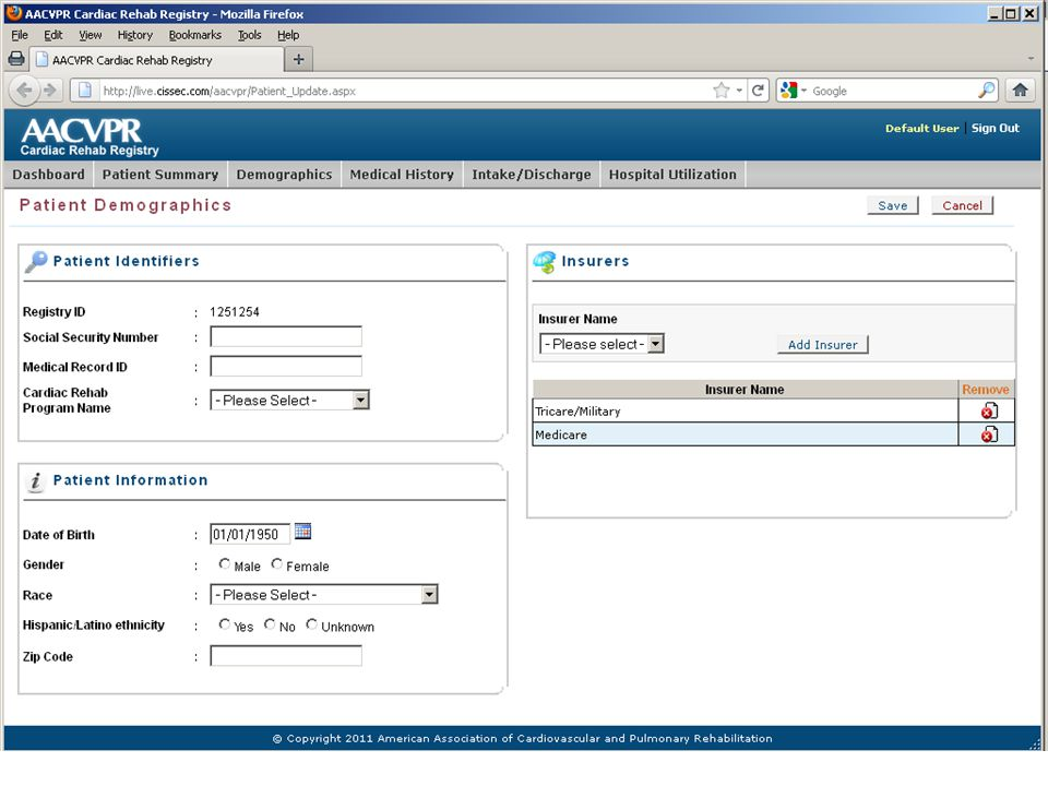 An example of the user interface (Demographics section).