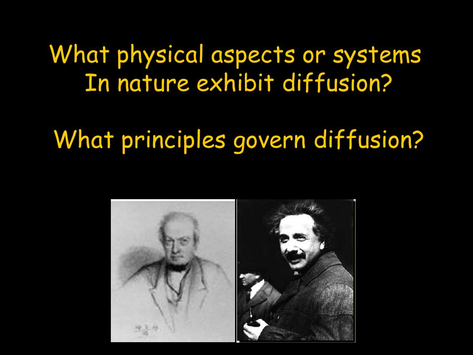 What physical aspects or systems In nature exhibit diffusion