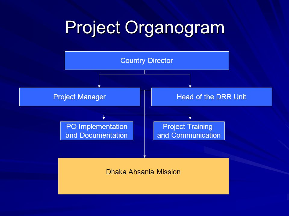 Project Organogram Country Director Project Manager