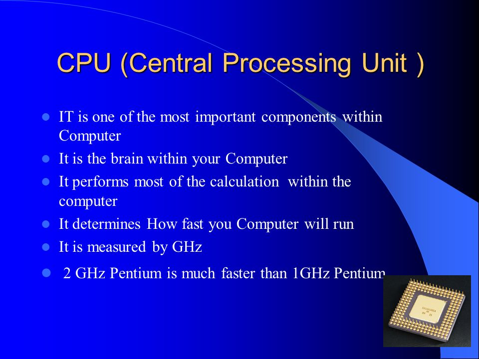 CPU (Central Processing Unit )