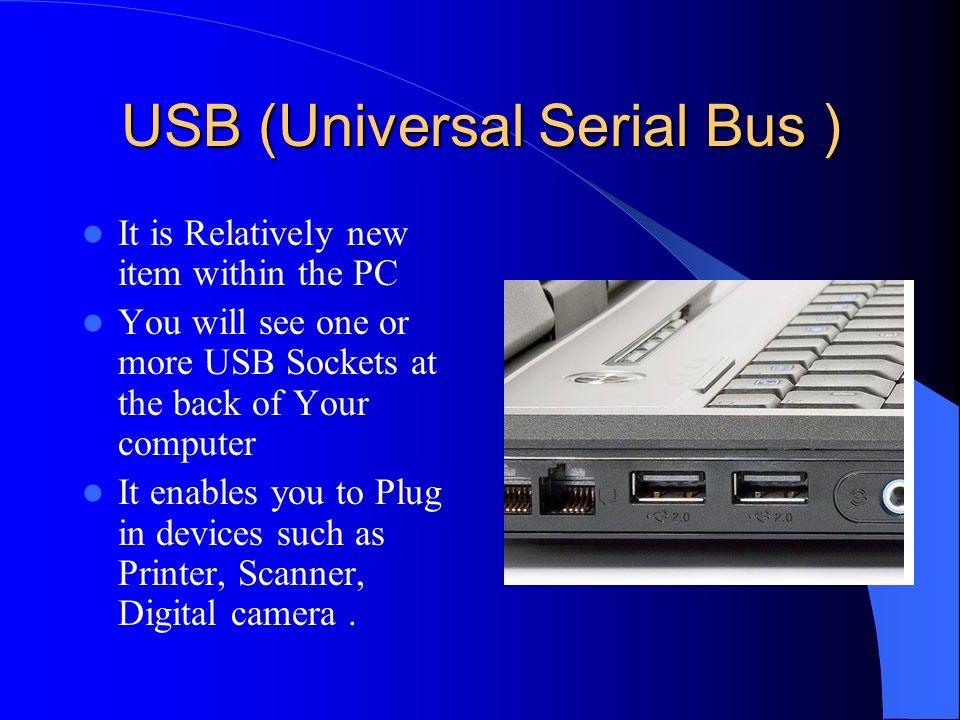 USB (Universal Serial Bus )