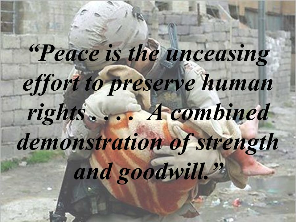 Peace is the unceasing effort to preserve human rights