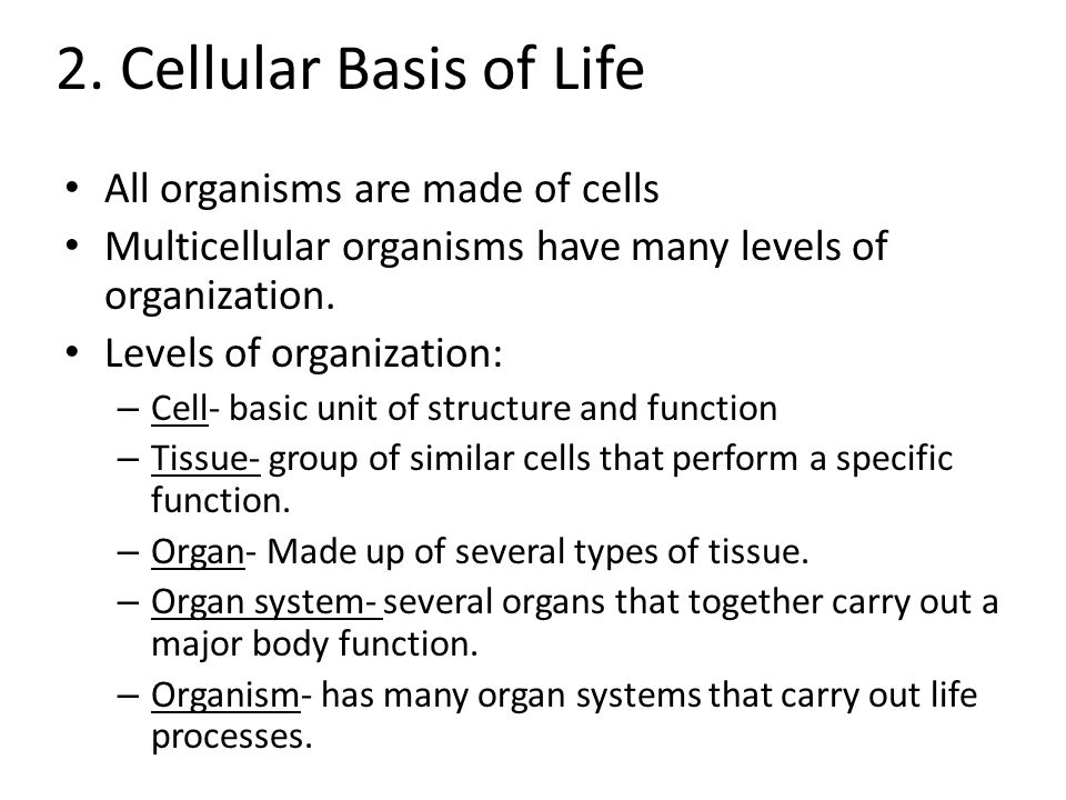 2. Cellular Basis of Life All organisms are made of cells