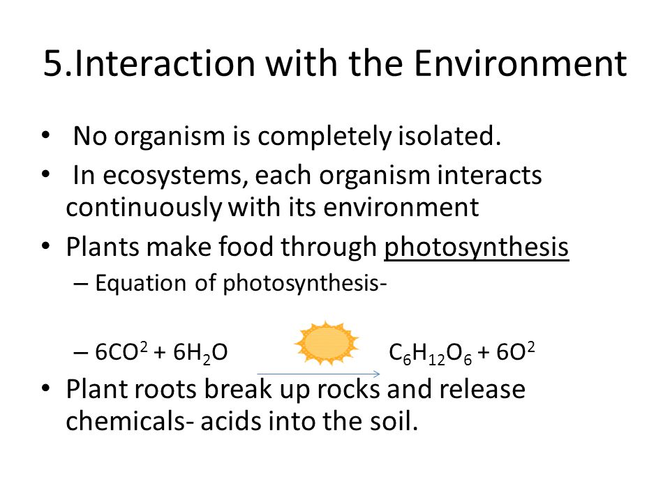 5.Interaction with the Environment