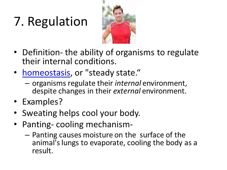 7. Regulation Definition- the ability of organisms to regulate their internal conditions. homeostasis, or steady state.