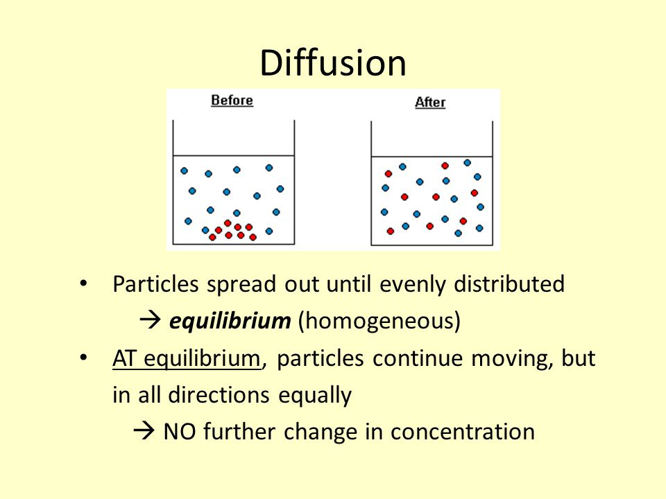 Diffusion Particles spread out until evenly distributed