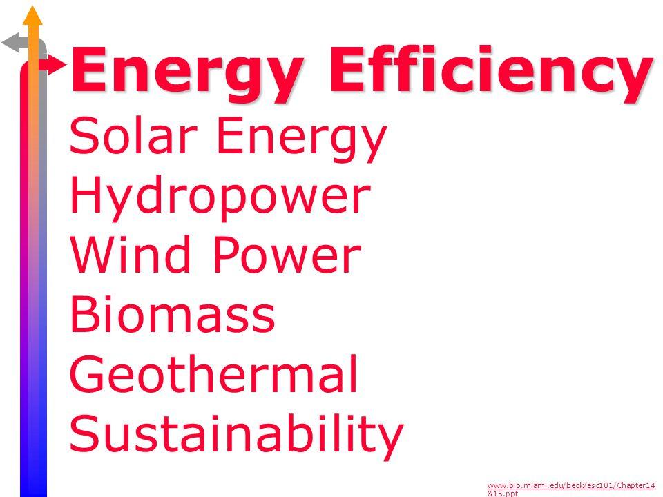 Energy Efficiency Solar Energy Hydropower Wind Power Biomass