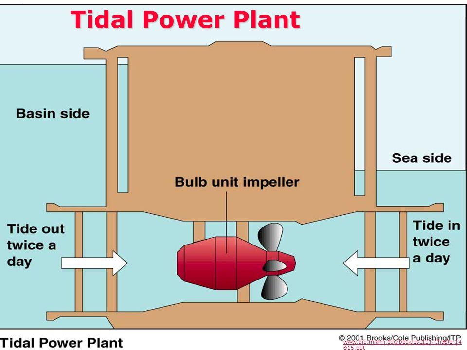 Tidal Power Plant www.bio.miami.edu/beck/esc101/Chapter14 &15.ppt