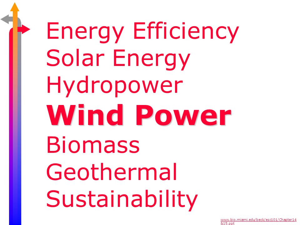 Wind Power Energy Efficiency Solar Energy Hydropower Biomass