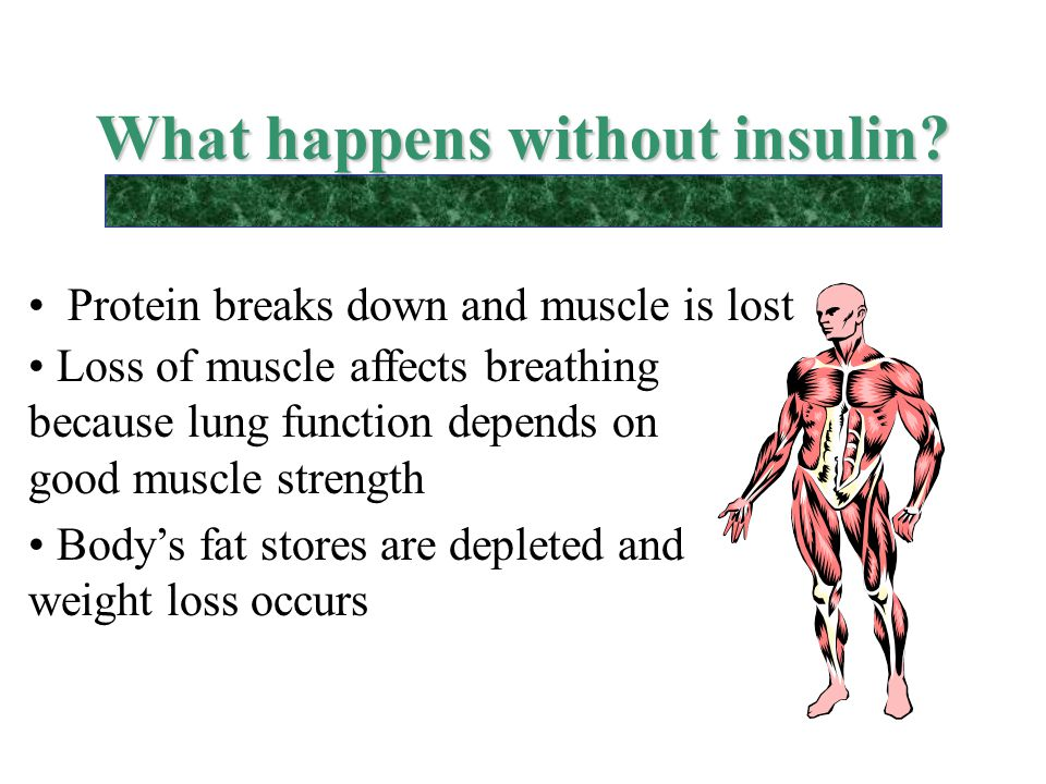 What happens without insulin