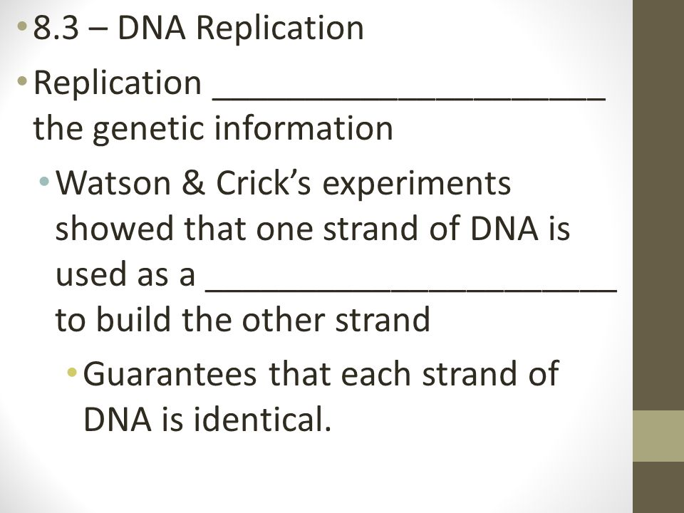 8.3 – DNA Replication Replication _____________________ the genetic information.