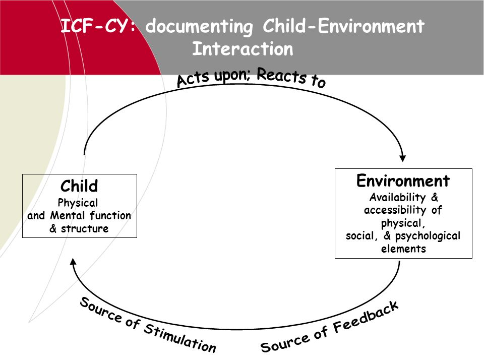 ICF-CY: documenting Child-Environment Interaction