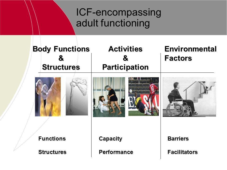 ICF-encompassing adult functioning