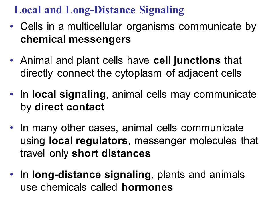 Local and Long-Distance Signaling